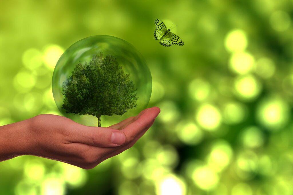 CSR_Nachhaltigkeit_MarketDialog